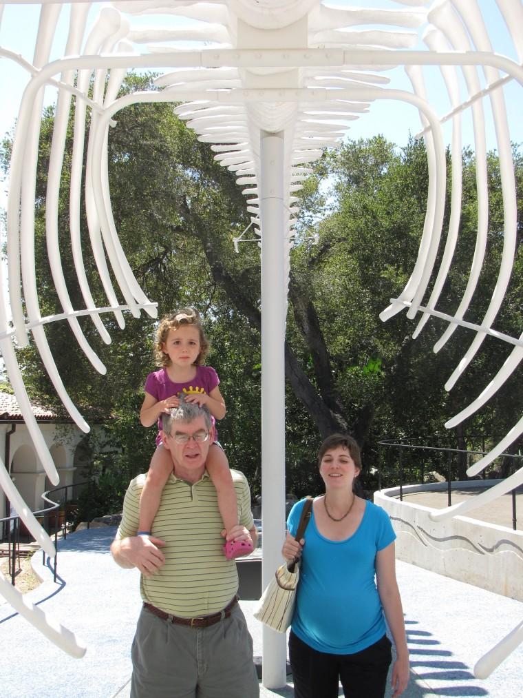 santa barbara nautral history whale bones