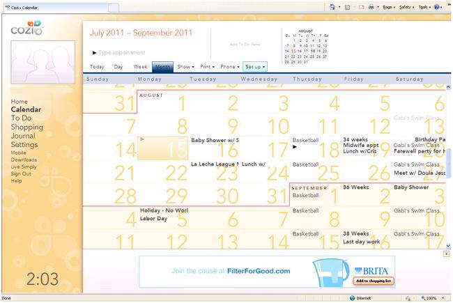 cozi calendar