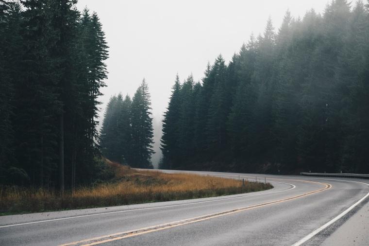 road-nature-street-curve